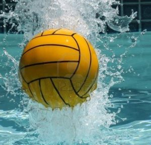 8234428-water-polo-ball-352x338